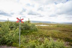 Шведские горы в лете стоковые фотографии rf