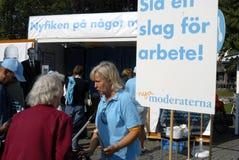 Шведские избрания Стоковые Изображения RF