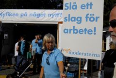 Шведские избрания Стоковое Изображение