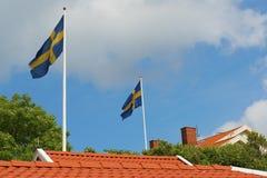 Шведские флаги стоковые фотографии rf