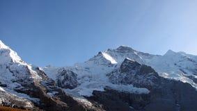 швейцарец горы jungfrau Стоковые Изображения