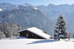 швейцарец праздника коттеджа Стоковое Изображение RF