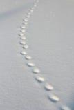 швейцарец снежка pizol шагов alps Стоковые Фотографии RF