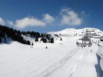 швейцарец alps катаясь на лыжах Стоковые Изображения RF