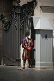 швейцарец vatican прихожей предохранителя Стоковые Фото