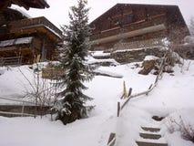 Швейцария Jungfrau Стоковые Фотографии RF