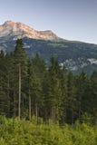 Швейцарская гора на заходе солнца стоковое изображение rf