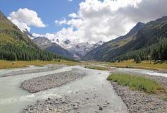 Швейцарская природа Стоковая Фотография RF