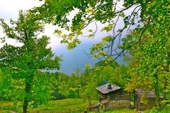 Швейцарская сельская местность Стоковые Фото