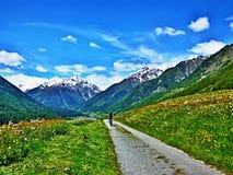 Швейцарский Альп-взгляд велосипедиста на дороге Стоковое фото RF