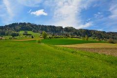 Швейцарский ландшафт природы Стоковая Фотография RF