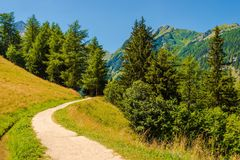 Швейцарский след гор Стоковые Изображения