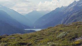 Швейцарский луг зеленой травы и красочных цветков, высоких горных пиков на предпосылке Дистантное река Пасмурная погода сток-видео