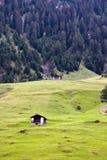 Швейцарский Alp Стоковое фото RF
