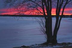 Швеция, LuleÃ¥ на ноче, взгляде над Luleälven Стоковые Фото