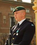 Шведская дворцовая стража Стоковые Фото
