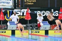 Шведский чемпионат в заплывании Стоковые Изображения RF