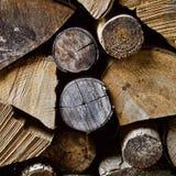 Швырок в woodpile зимы стоковые изображения rf