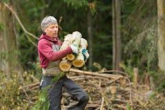 швырок нося округляет работника стоковые фото