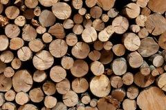 Швырок штабелированный в woodpile Стоковые Изображения RF