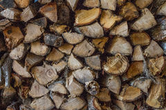 Швырок Стоковое фото RF