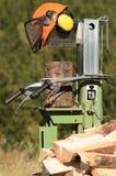 Швырок Стоковая Фотография RF