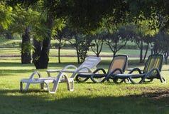 Шезлонги на зеленой траве Стоковые Фото