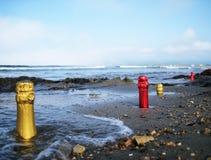 Шеи бутылки в песке Стоковые Фотографии RF