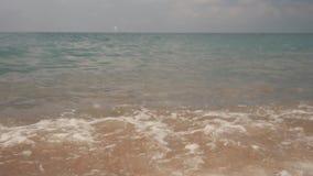 Шелковистые волны на камешках моря Пляж гонта акции видеоматериалы