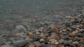 Шелковистые волны на камешках моря Пляж гонта сток-видео