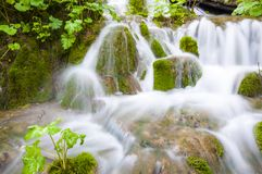 Шелковистые потоки водопада окруженные мшистыми утесами и заводами леса в озерах национальном парке Plitvice, Хорватии Стоковое Изображение
