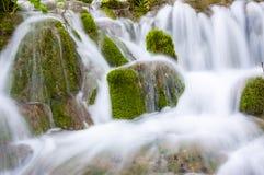 Шелковистые потоки водопада окруженные мшистыми утесами и заводами леса в озерах национальном парке Plitvice, Хорватии Стоковые Фото