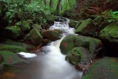 шелковистый водопад Стоковые Фото