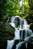 Шепот водопада Стоковое Фото