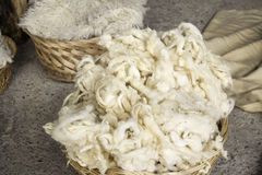 Шерсти овец естественные стоковые изображения rf
