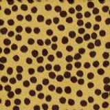 шерсть гепарда иллюстрация штока
