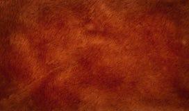 Шерсть предпосылки красивейшая коричневая Стоковое Изображение RF