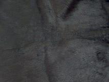 шерсть предпосылки Стоковая Фотография RF