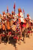 Шествие на фестивале пустыни, Jaisalmer верблюда, Индия Стоковые Фотографии RF