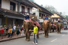 Шествие слона на Новый Год 2014 Lao в Luang Prabang, Лаосе Стоковое Изображение RF