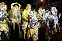 Шествие танца тигра Стоковая Фотография RF