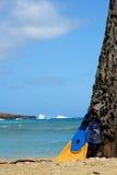 шестерня snorkelling стоковое изображение rf