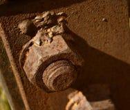 Шестиугольная гайка Стоковые Фотографии RF