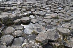 Шестиугольные столбцы базальта на мощёной дорожке гиганта в Ирландии Стоковое фото RF