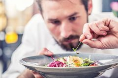 Шеф-повар в кухне гостиницы или ресторана подготавливая еду стоковое фото
