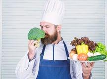 Шеф-повар использует только продукт eco дружелюбный Eco и органическая концепция Свежие овощи сбора Выберите самые лучшие ингреди стоковые фотографии rf