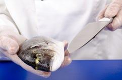 шеф-повар леща режет женское море вверх Стоковая Фотография