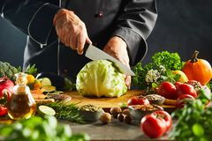 Шеф-повар отрезая через свежую зеленую голову капусты стоковое изображение