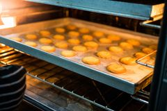 Шеф-повар печет печенья стоковые фотографии rf