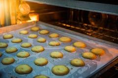 Шеф-повар печет печенья стоковое фото